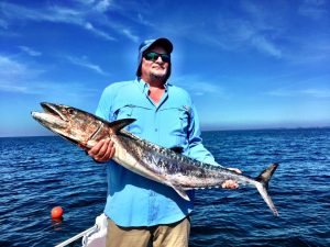 sanibel-offshore-fishing-kingfish