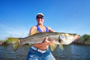 Sanibel Island Snook fishing
